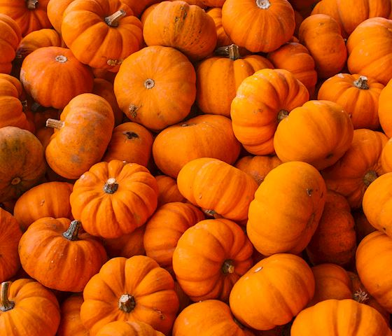 halloween-blackstones